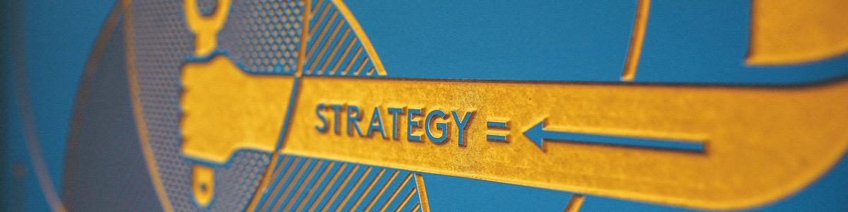 Vinehealth Australia - Strategic Plan